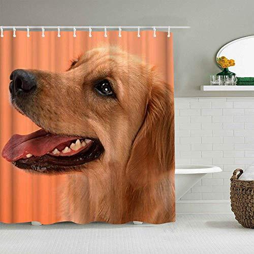 N\A Cortina de Ducha Perro Golden Retriever Lindo canino Forros de baño Impermeables Ganchos incluidos - Ideas Decorativas para el baño Accesorios de Tela de poliéster