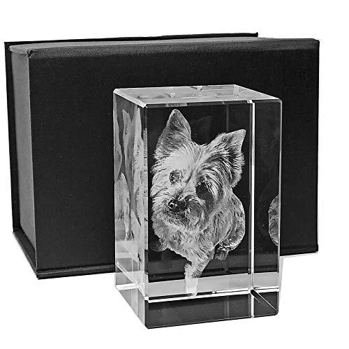 Regalo personalizado para tu foto grabada con láser 3D en el interior del cristal. Tamaño: 5 x 5 x 8 cm.