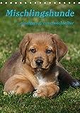 Mischlingshunde (Tischkalender 2021 DIN A5 hoch)