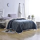 Longhui bedding Thick Blanket for Winter, Queen 80 x 90 Plush Warm Heavy Soft Sherpa Fuzzy Fleece Microfiber Couch, Bed Throw 6lb Weight - Grey, Navy Blue