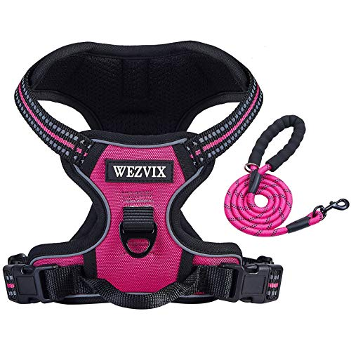 WEZVIX Hundegeschirr und Leine, Haustiergeschirr mit Leine, verstellbar, für den Außenbereich, reflektierendes Oxford-Material, Weste für kleine, mittelgroße und große Hunde, einfach zu kontrollieren