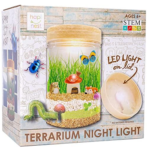 Hapinest Light-up Terrarium...