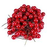 ペッパーベリー・プリザーブド ドライフラワー 100pcs人工チェリー 食品サンプル 果物模型 本物そっくり フルーツサンプル 造花 ディスプレイ模型 クリスマス装飾 赤