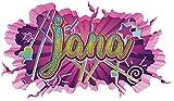 3D Wandtattoo Graffiti Jana Mädchen Name Wand Aufkleber Wanddurchbruch Girl sticker Wandbild Kinderzimmer 11U118, Wandbild Größe F:ca. 97cmx57cm