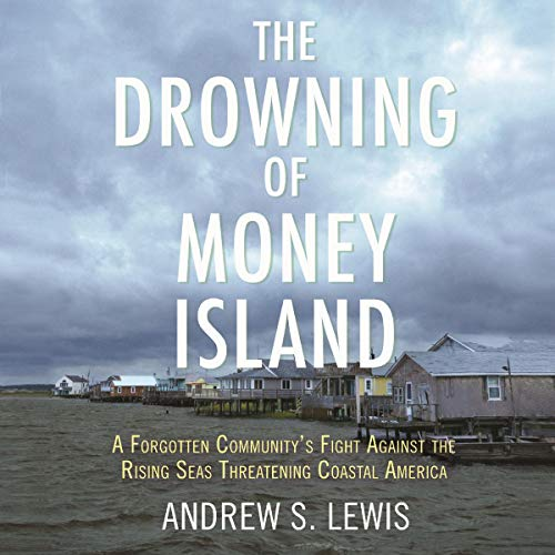 The Drowning of Money Island cover art
