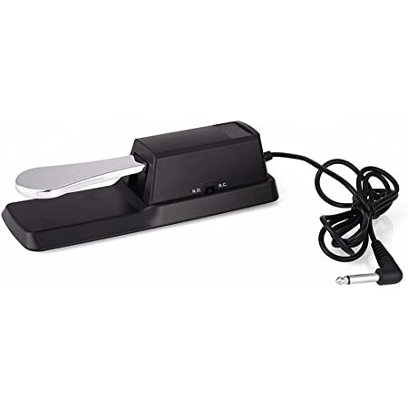 TechnoBuyers Flanger Sustain Pedal for Yamaha,Korg,Casio Keyboard, Damper Pedal