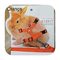 ペットウサギソフトハーネスリード調節可能なバニートラクションロープランニングウォーキング用セール-Orange-