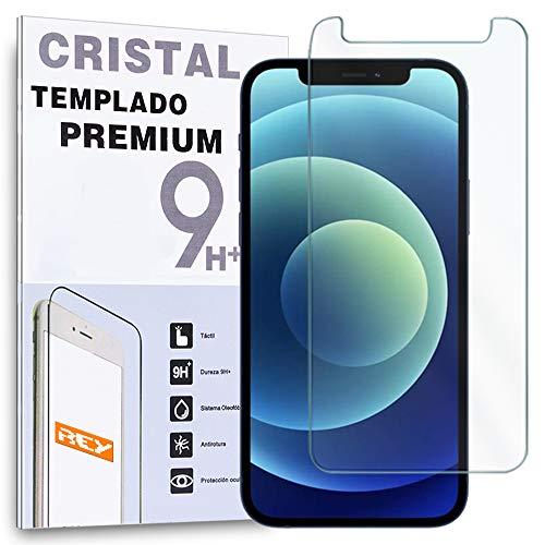 REY - Protector de Pantalla para iPhone 12 - iPhone XR - iPhone 11, Cristal Vidrio Templado Premium