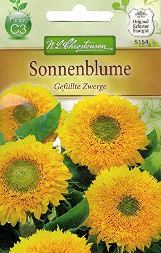 Chrestensen Sonnenblume 'Gefüllte Zwerge'