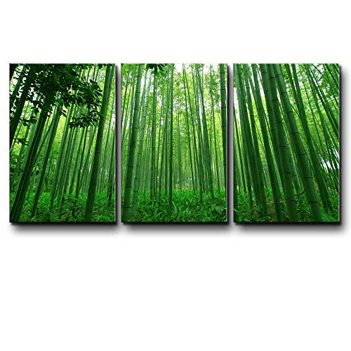 wall26 - Three Piece Canvas - Diagonal Green Bamboo Forest on 3 Panels - Canvas Art Home Art - 24x36 inches