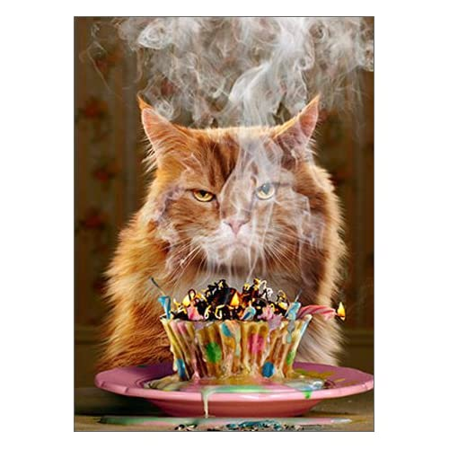 Cat Greeting Card Cats Ginger Cute Love Pretty Birthday Humorous Fun Pet Pets