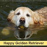 Kattobello, K: Happy Golden Retriever (Wall Calendar 2020 30 (Calvendo Animals)