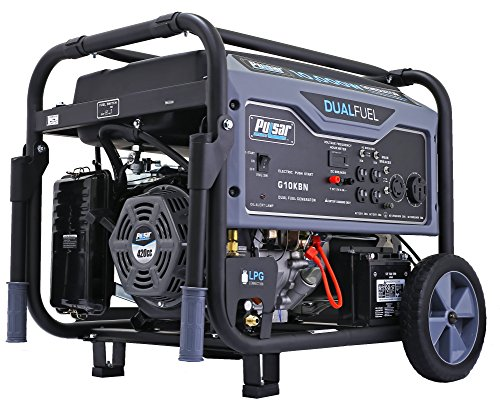 Pulsar G10KBN Space Gray 10,000 Watt Portable Dual-Fuel...