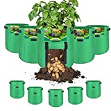 TOMVYTER 10 Gallon Potato Grow Bags 5 Pack Vegetable Grow Bags with Handles and Two SidesVelcro Window, Reusable Thickened Nonwoven Fabric Pots for Tomato, Carrots, Onions and Vegetables