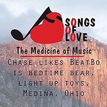 Chase Likes BeatBo Is Bedtime Bear, Light up Toys, Medina, Ohio