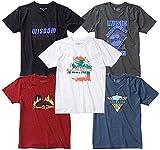 メンズ 半袖 Tシャツ 大きいサイズ 5枚組 デザイン固定 夏 プリント アウトドア 透けない 綿100 6L rnt-2001~2005-6L