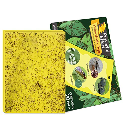 Kensizer 20-Pack Dual-Sided Yellow Sticky Gnat Traps for Indoor/Outdoor Flying Plant Insect Like Fungus Gnats, Whiteflies, Aphids, Leaf Miners, Thrips, Other Flying Plant Insects - 6x8 Inches