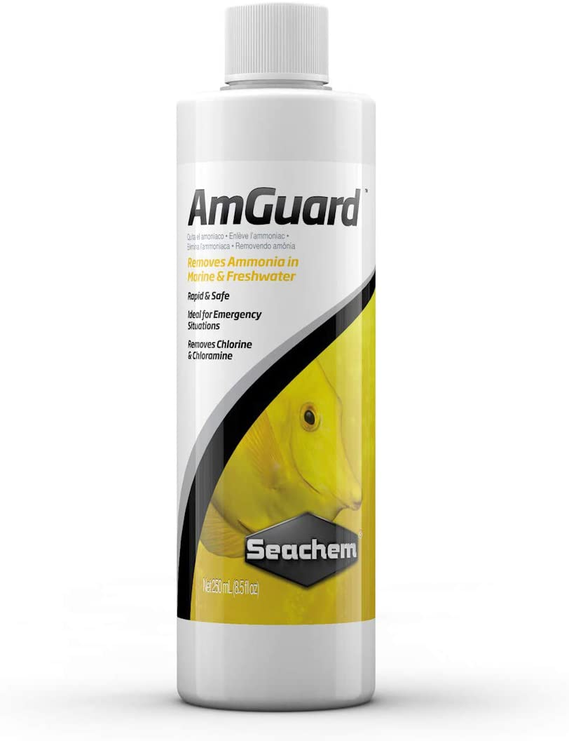 Seachem All stores are sold AmGuard Popularity 250ml