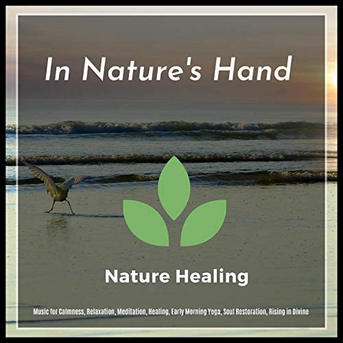 Liquid Ambiance, Serenity Calls, Yogsutra Relaxation Co, Ambient 11, The Inner Chord, Mystical Guide & Spiritual Sound Clubb