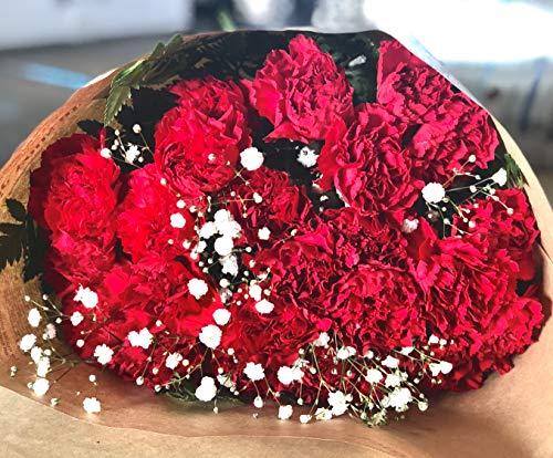 PURIZA 母の日 カーネーション&かすみ草 花束 24本束 感謝の気持ちを倍に 色選び 時間指定ができる (レッド)