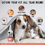 IMG-1 spray antiparassitario per gatti cani