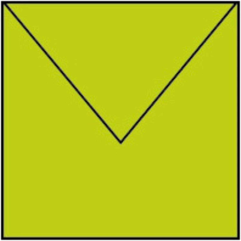 Rössler Papier - - Paperado-Briefumschlag 164x164 m. Sf, Maigrün B07CX6FZHW | Sale Online Shop