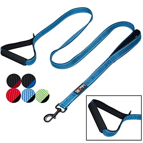tobeDRI Heavy Duty Dog Leash  2 Padded Handles 6 feet Long  Dog Training Walking Leashes for Medium Large Dogs Blue