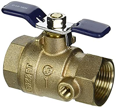 "Febco 781-054LL 1"" Ball Valve Full Port Thread x Thread with Tapped Side by Park Supply of America"