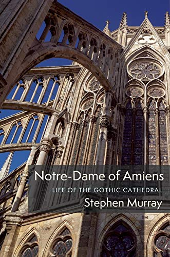 Compare Textbook Prices for Notre-Dame of Amiens: Life of the Gothic Cathedral Columbiana  ISBN 9780231195768 by Murray, Stephen