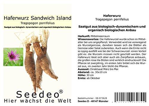 Seedeo® Haferwurz (Tragepegon perrifelius) ca. 100 Samen BIO