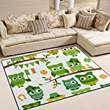 Ahomy St. Patricks Day Eulen-Teppich, modern, quadratisch, Bodenmatte für Kinder, Wohnzimmer, Spielzimmer, Dekoration, 160 cm x 122 cm, multi, 63 x 48 inch