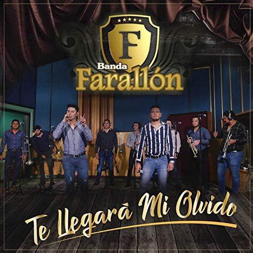 Banda Farallón