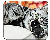 ホームオフィスの仕事のためのオフィスのマウスパッドのペット猫のマウスパッド