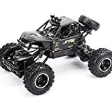 1/14 Radio Remote Control Big Tire Monster RC Truck, 2.4G Toys Buggy Trucks Off-Road For Children Rock Crawlers 4x4 Model Vehicle Toy High Speed ​​RC Car 4WD Cars, il miglior regalo per i bambini