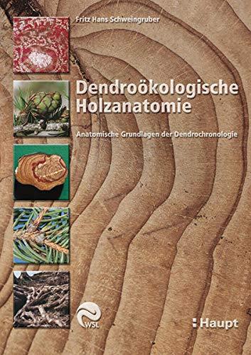 Dendroökologische Holzanatomie: Anatomische Grundlagen der Dendrochronologie