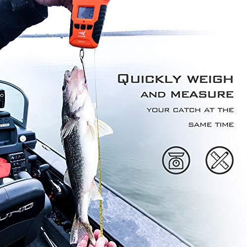 KastKing Water Resistant Digital Fishing Scale