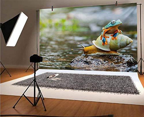 Divertido fondo de vinilo para fotografía de 5 x 3 pies, linda rana colorida por encima del caracol río, roca de agua, moluscos, anfibios, fondo para fotografía de estudio