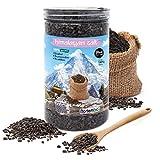 Nortembio Sal Negra del Himalaya 1,45 Kg. Gruesa (2-5 mm). 100% Natural. Sin Refinar. Sin Conservantes. Extraída a Mano