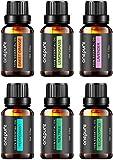 Aceites Esenciales de Grado Terapeutico para Aromaterapia 100% Puros BEST 6 - Los 6 Aceites mas Vendidos, de Lavanda, Eucalipto, Lemongrass, Tea Tree, Menta y Naranja