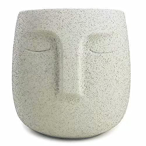 Cement Head Planter wirh Drainage Hole Face Vaes Cement Planter with Face Statue Plant Pot Concrete Flower Pot Succulen Planter (Gray)