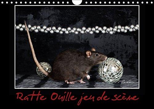 Ratte Ouille jeu de scène (Calendrier mural 2018 DIN A4 horizontal): Petite ratte en spectacle. (Calendrier mensuel, 14 Pages ) (Calvendo Animaux) [Kalender] [Apr 04, 2017] Mahevo, Kathy