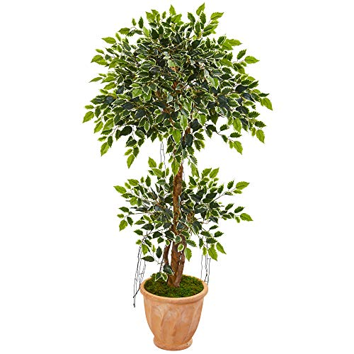 planta ficus natural de la marca Nearly Natural