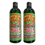 Best Bong Cleaners - 2 Count - Green Piece Cleaner 16 oz Review