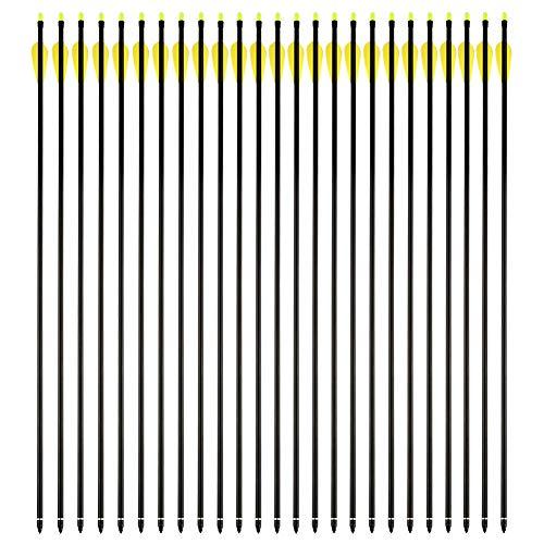VERY100 Bogenpfeile 25Stücke Fiberglaspfeile Pfeile Bogensport für bogenschießen 30