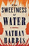 Image of The Sweetness of Water: A Novel