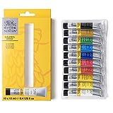 Winsor & Newton acrílico Galeria - Set de iniciación a la pintura acrílica, 10 colores de 12 ml