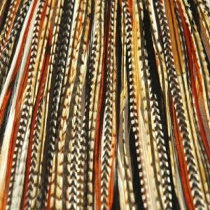 4-7 Black with Browns & Beige Quality Salon Feathers for Hair Extension by SEXY SPARKLES