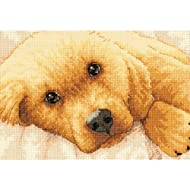 Dimensions Gold Collection Petite Golden Puppy Counted Cross Stitch Kit: 7x5