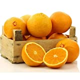 Organic Mountain Navel Oranges 1 Dozen (12)