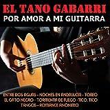 Por Amor a Mi Guitarra
